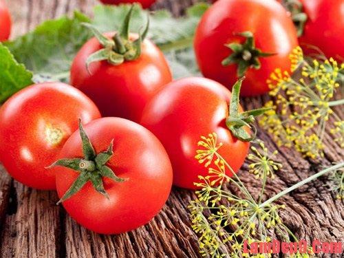 Tác dụng và công thức  làm đẹp từ cà chua